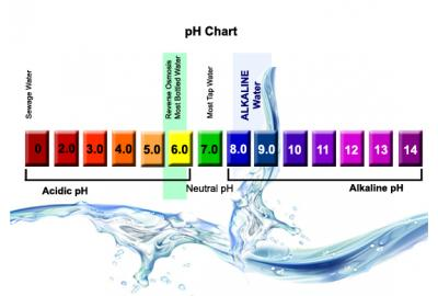 Is Alkaline Water Beneficial?