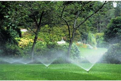 Can I Get Iron Out of My Irrigation Water?