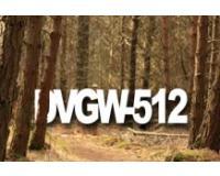 DVGW-512 – Urban Legend?