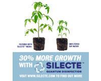 Water Treatment for Growing Marijuana