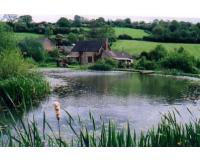 The Best Method to Treat Surface Water - Lakes and Ponds