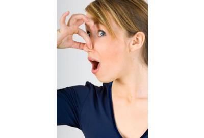 How to Get Rid Of Rotten-Egg Odor