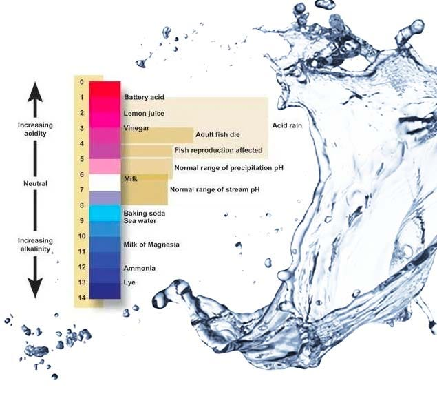 PH scale for water