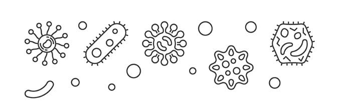 diagram of germs